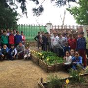 Huerto Escolar CEIP Andalucia Posadas